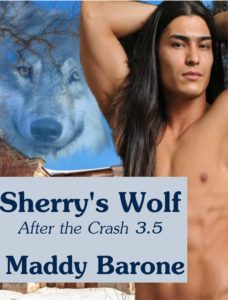 Sherrys-Wolf-After-the-Crash-35